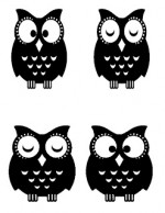 Nursery Decorating Ideas Part 4: Vintage Windows with Owls!