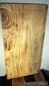 DIY State Plaque ~ Trace the state onto the wood using an overhead projector! {Sawdust and Embryos}