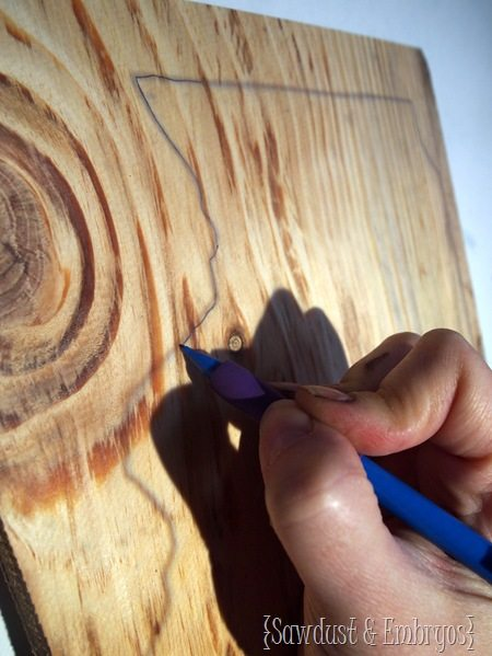 Trace the perimeter of your state onto wood and cut a state plaque! [Sawdust and Embryos]
