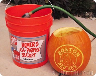 soak-your-pumpkin-in-water
