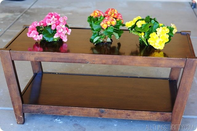 coffee-table-with-flower-planters