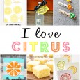 citrus-craft-recipe
