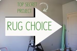 Rug-choice.jpg