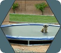 diy-inground-trampoline-instructions
