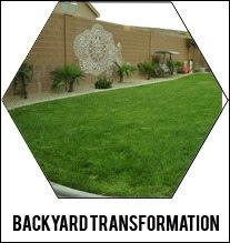 backyard-design-transformation