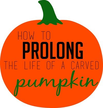 how-to-prolong-the-life-of-a-carved-pumpkin