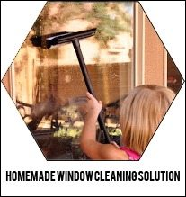homemade-window-cleaning-solution
