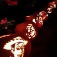 pumpkin-carving-display.jpg