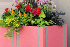DIY Coral Paver Planter
