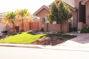 front yard landscaping overhaul