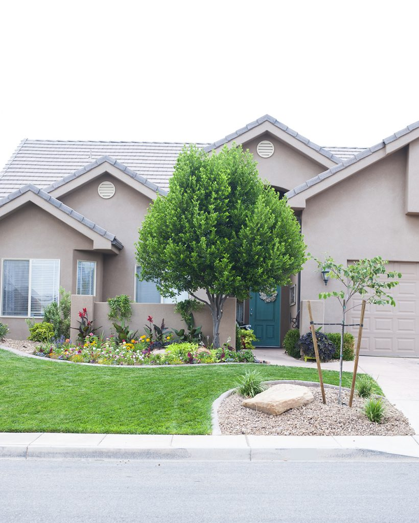 Small Front Yard Curb Appeal: Front Yard Landscaping Update And Progress Report