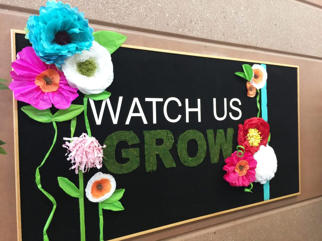 School Bulletin Board Quot Watch Us Grow Quot All Things Thrifty