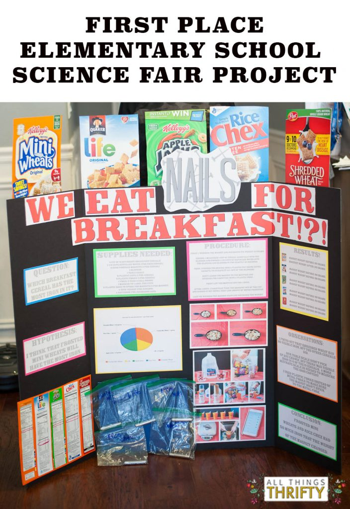 Science Fair Project Ideas For 5th Graders 2 Copy