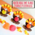 Adorable No-Bake Turkey Cookies