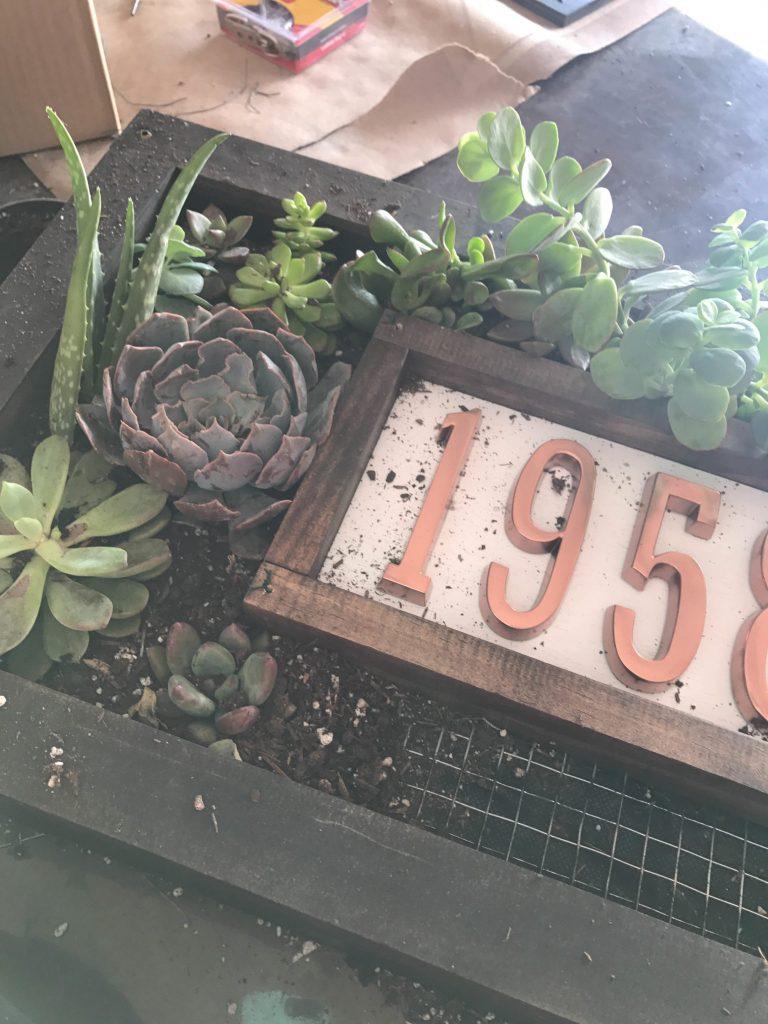 Custom House Numbers Succulent Garden-11