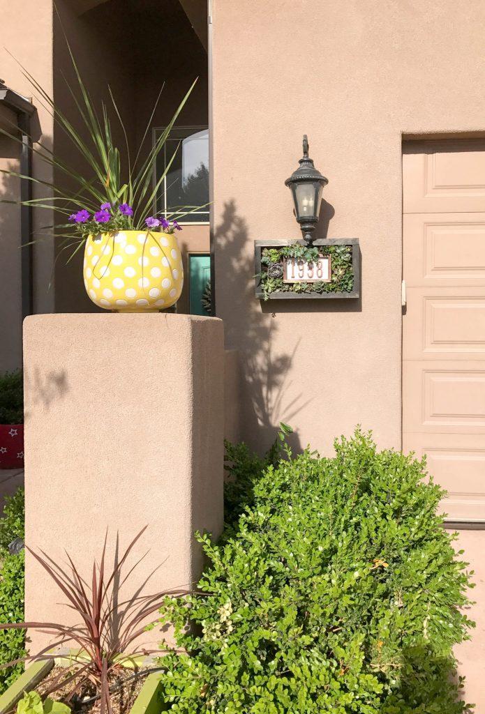 Custom House Numbers Succulent Garden-3