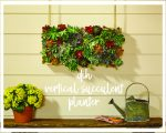Gorgeous DIH vertical Succulent Garden {with Home Depot}