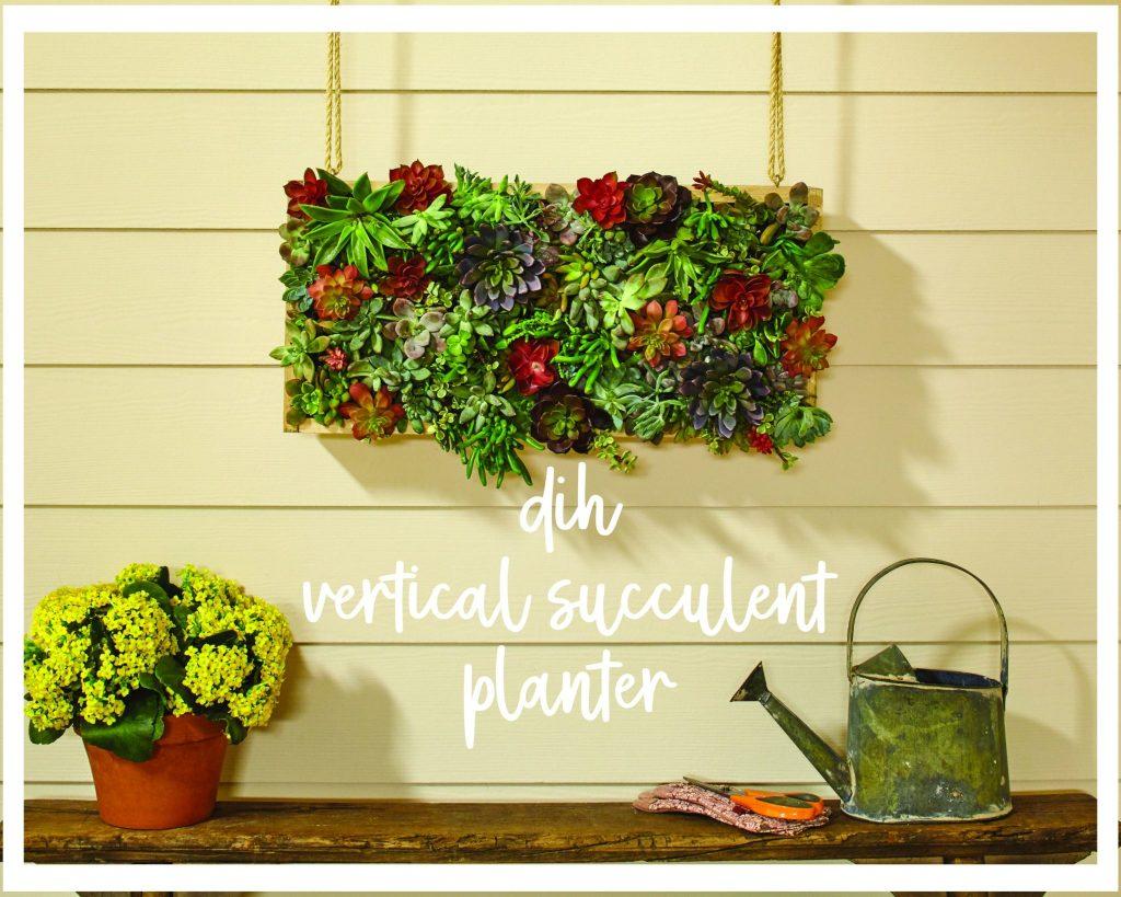 Gorgeous Dih Vertical Succulent Garden With Home Depot