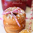 Raspberry Chocolate Chip Mini Donuts