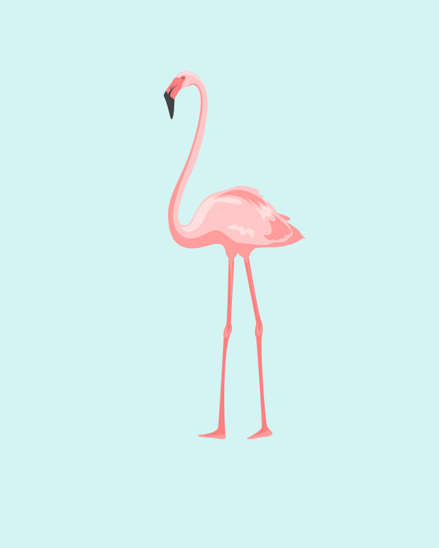OhSoLovely-Flamingos-01