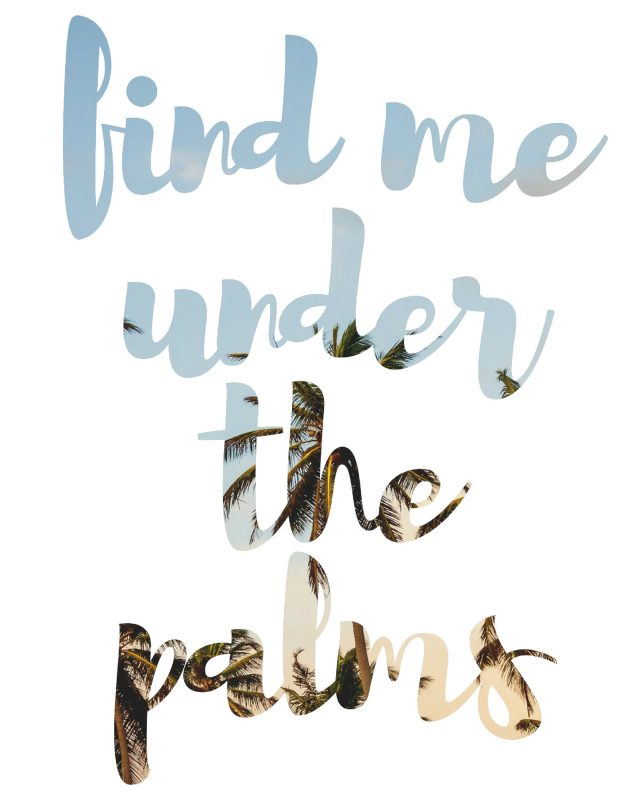 find-me-under-the-palms